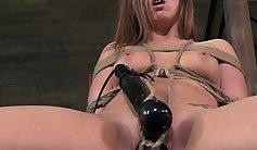 Bound slave is sucking a vibrator