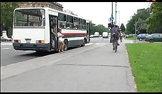 Assistant fucking at a public bus stop